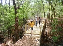 GEO Aventura Resort 12