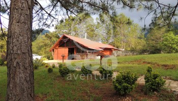 GEO-Aventura-Resort-5