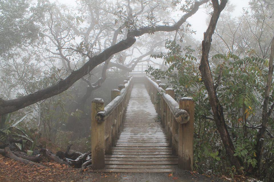 Parque Ecológico Chipinque. Foto: facebook.com/ParqueChipinque/